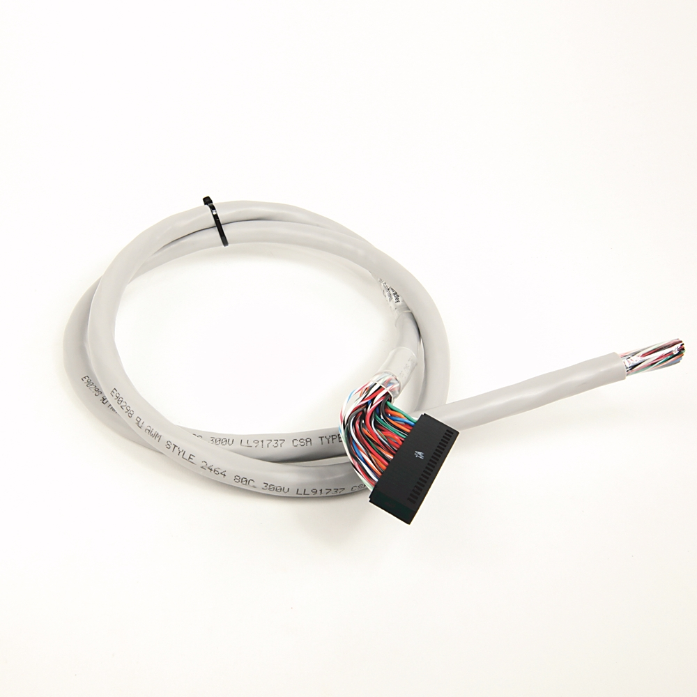 1492-CAB010P62 AB 1.0M CABLE FOR 1762-IQ32T,OB32T AND OV32 88563004168
